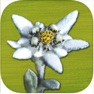 AlpineFlower finder
